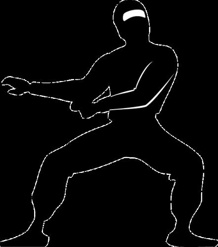 ninja-309446_640