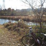 会社さぼって自転車で寂しい道をただひとり